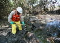 All you Need to Know About Environment Cleanup Companies