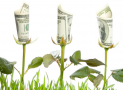 How to Save Money by Going Green