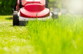 Why You Should Stop Fertilizing Your Lawn Now