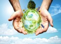 What to know about today's sustainable waste management strategies