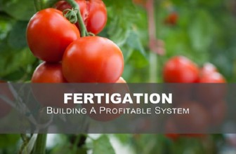 How Does Fertigation Help Greenhouse Grower's Crop Production?